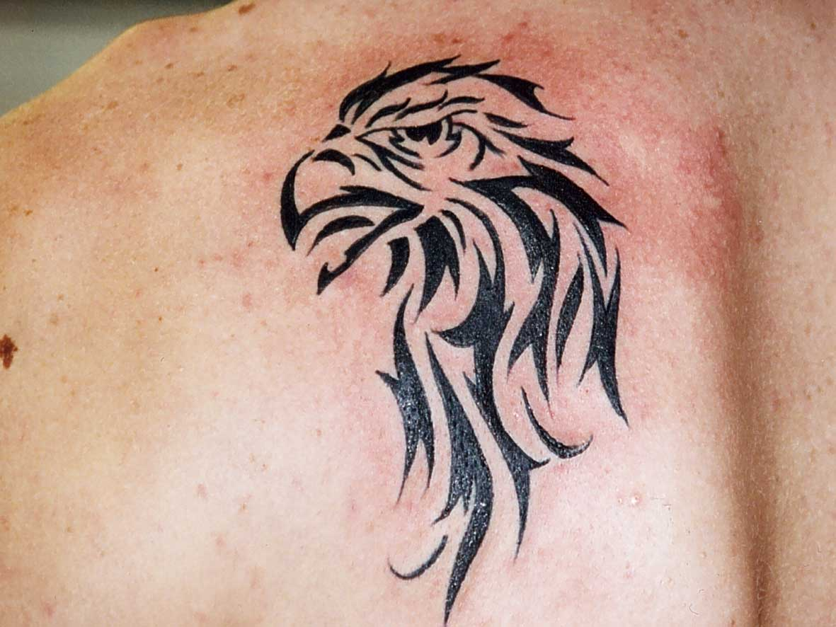 Tattoo animal tribal tarzan tattoo - Tatouage geometrique animaux ...